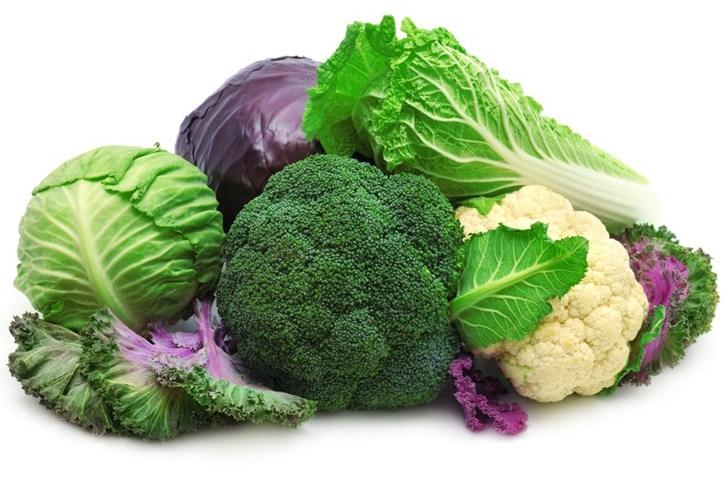 Kết quả hình ảnh cho rau màu xanh đạm