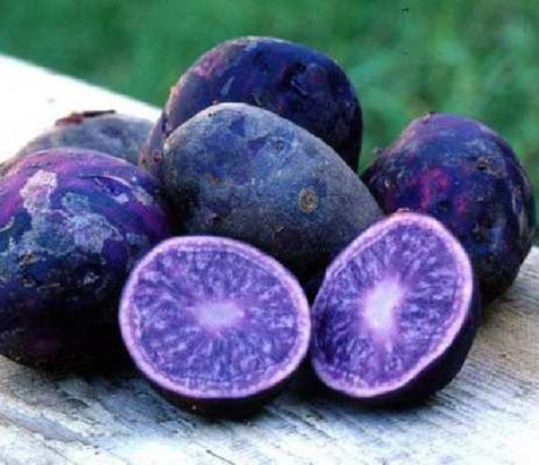 Công dụng của thực phẩm biểu hiện qua màu sắc của thực phẩm đó
